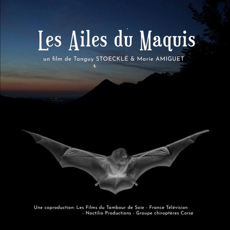 AfficheFilm_Les-ailes-du-maquis-768x768